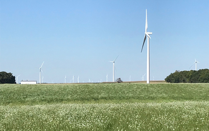 Field with wind turbines in background